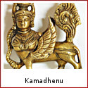 Kamadhenu - The Sacred Wish Fulfilling Cow