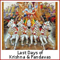 The Grip of Karma - Last Days of Krishna and the Pandavas