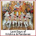 The Grip of Karma - Last Days of Krishna and the Pandavas