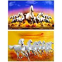 Graceful White Horses - Set of 2 Unframed Posters