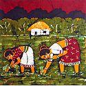 Village Women Planting Rice Paddy