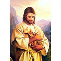 Jesus Christ - The Animal Lover