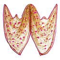 Light Brown Synthetic Net Dupatta with Embroidery
