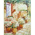 Flowering Pots in a Verandah