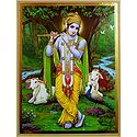 Nature Lover Krishna