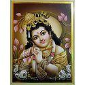 Young Krishna