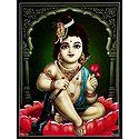 Krishna Sitting on Lotus