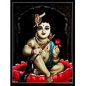 Krishna Sitting on Lotus