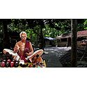 Indian Cobbler - Unframed Photo Print on Paper