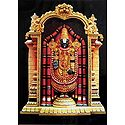 Lord Venkateshwara Photographic Print