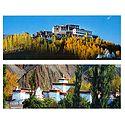 Alchi Temple and Matho Monastery, Ladakh - Set of 2 Postcards