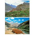 Chitkul in Kinnaur and Dhankar Gompa in Spiti - Set of 2 Postcards