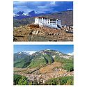 Stanka Gompa, Ladakh and Manali, Himachal Pradesh - Set of 2 Postcards