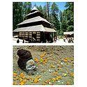 Hadimba Temple, Himachal Pradesh and Portrait of Sadhu - Set of 2 Postcards