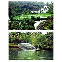 Coconut Groves and Fishing in River Sal, Goa, India - Set of 2 Postcards