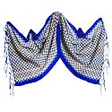 Check Design Woolen Stole with Dark Blue Border