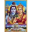 Shiva, Parvati with 12 Jyotirlingas