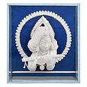 Shola Pith Krishna