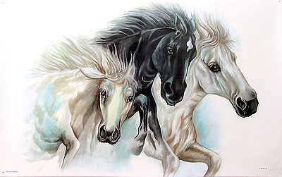 Horse Painting - Black and White Beauties
