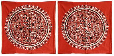 Two Pieces Kantha Stitch Rust Cushion Covers