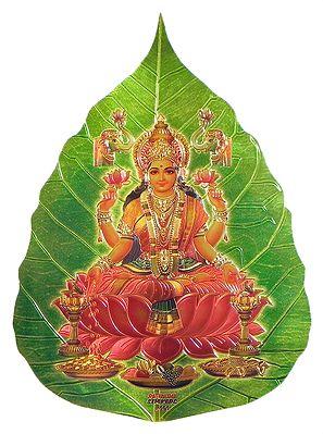 Lakshmi on Pipul Leaf