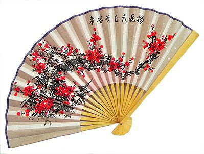 Color of Passion - Wall Hanging Fan