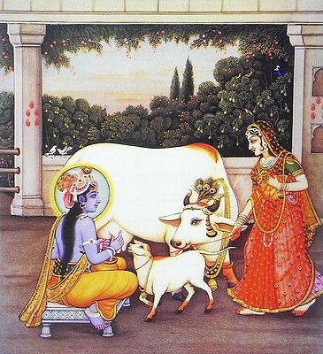 Krishna Milking cow with Radha Nearby