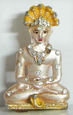 Stone Studded Mahavir