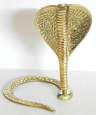 Snake of Shiva