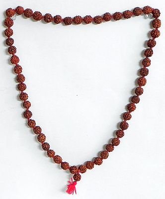 Japa Mala or Prayer Mala with 54 Rudraksha Beads