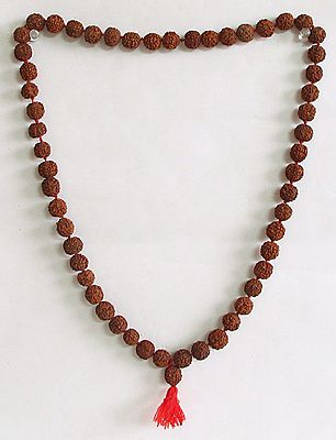 Japa Mala or Prayer Mala with 54 Rudraksha Beads