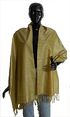 Golden Yellow with Silver Tanchoi Weaved Banarasi Stole
