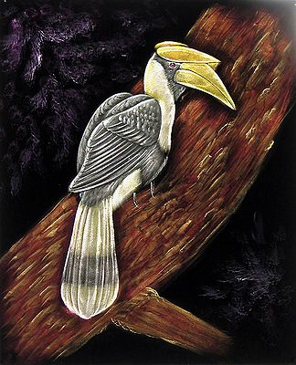Hornbill on a Tree