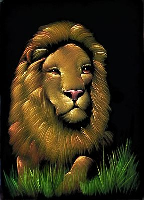 Lion - King of the Jungle