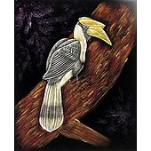 Hornbill on a Tree - Painting on Velvet