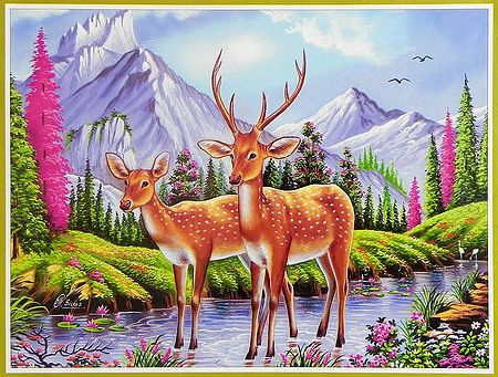 Deer Couple in a Heavenly Abode