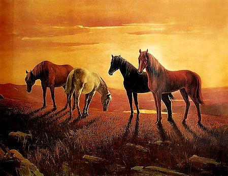 Graceful Horses - Poster