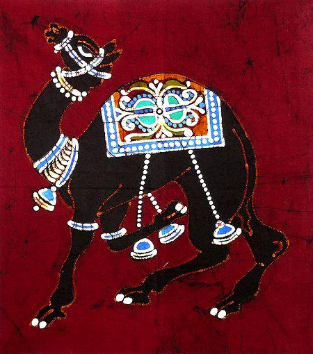 Camel - Animal of the Desert