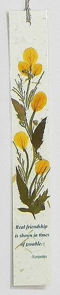 Dried Flowers Pasted on Handmade Paper