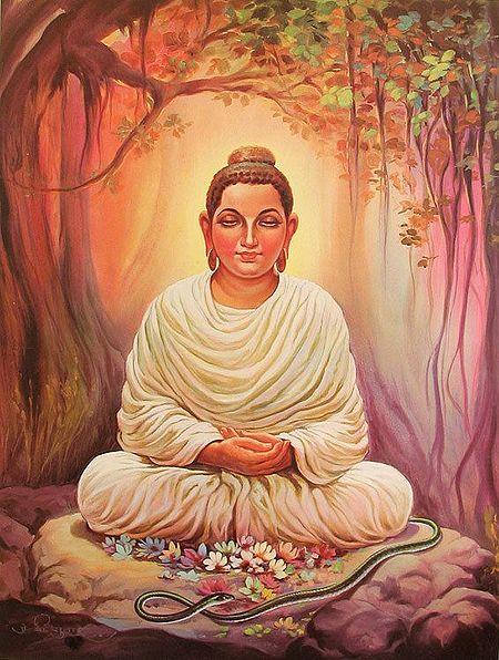 Meditating Buddha Under the Bodhi Tree