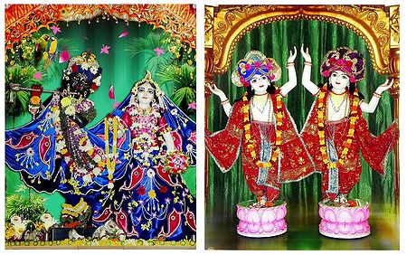 Radha Krishna and Gaur Nitai - Set of 2 Photo Print