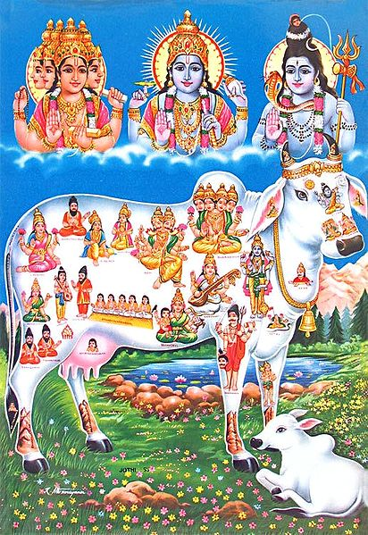 Kamadhenu - The Divine Cow