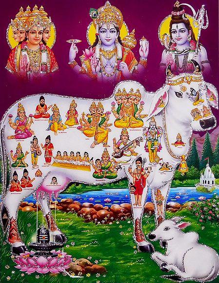 Kamdhenu with Brahma, Vishnu and Shiva - Glitter Poster