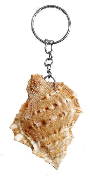 Designer Shell Key Chain