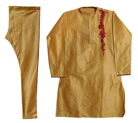 Embroidered Beige Churidar Kurta