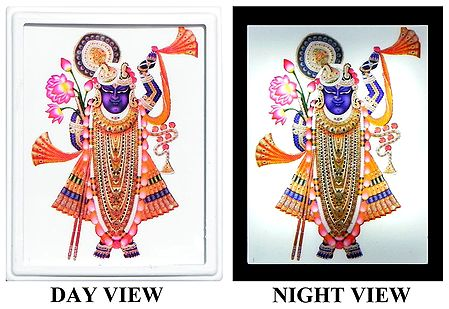 Dwarkadheesh Plug-on Night Lamp with Adaptor