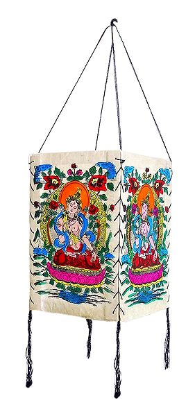 Hanging Foldable White Paper Lamp Shade with Colorful Tara Print