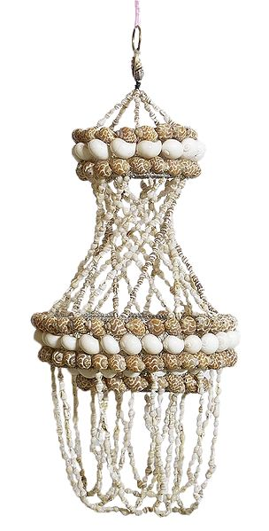 Shell Jhalar Lamp Shade