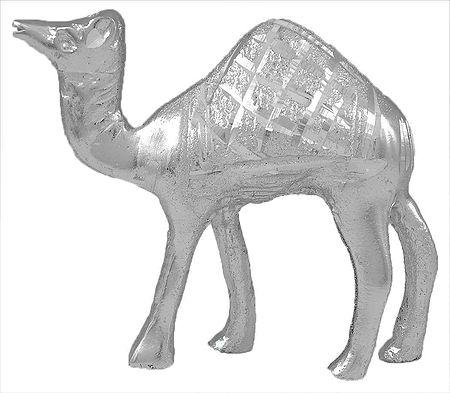 White Metal Camel