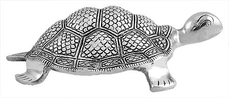 Carved Metal Tortoise